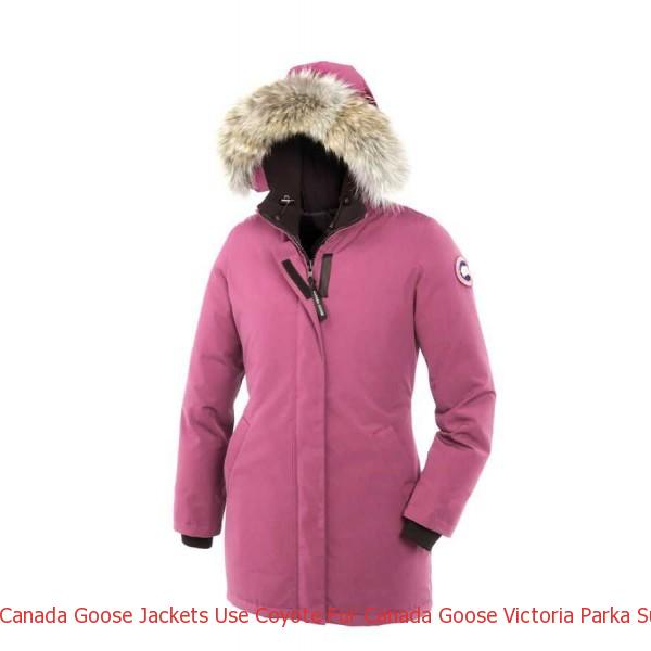 Canada Goose Jackets Use Coyote Fur Canada Goose Victoria Parka Summit Pink For Women